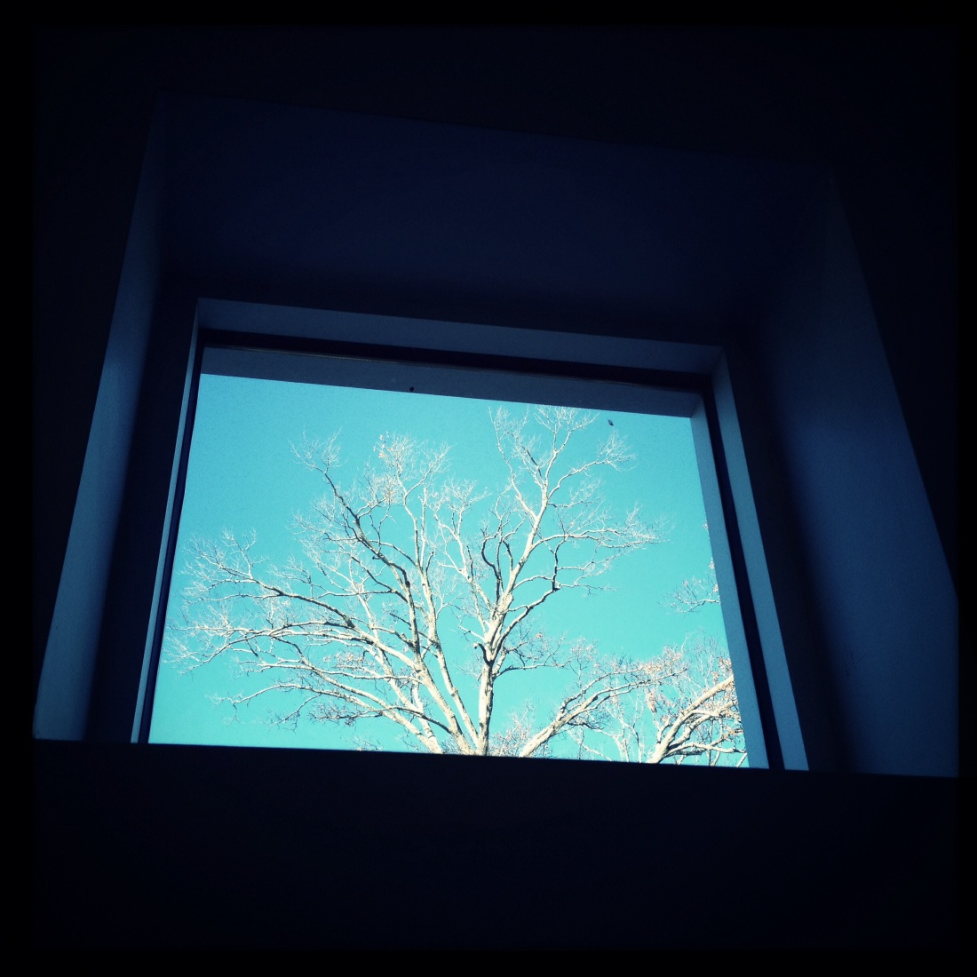 Uptown window